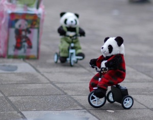 Panda+Bicycle