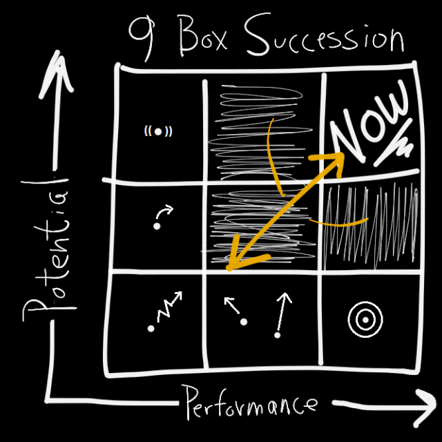 9 Box Succession_b